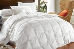 Как правильно выбрать и купить одеяло из лебяжьего пуха?