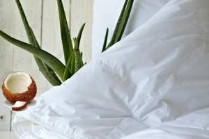 Где можно выбрать и купить одеяло из алоэ вера?