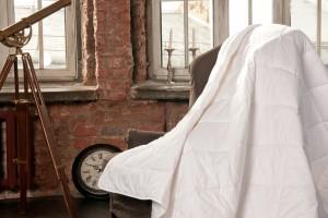 Что нужно учесть, перед тем как купить одеяло из пуха-пера?