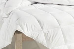 Пять основных преимуществ одеяла из Алоэ Вера