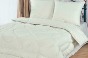 Можно ли в домашних условиях стирать одеяло из лебяжьего пуха?