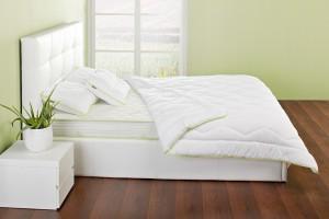 Основные правила эксплуатации одеяла из Алоэ Вера